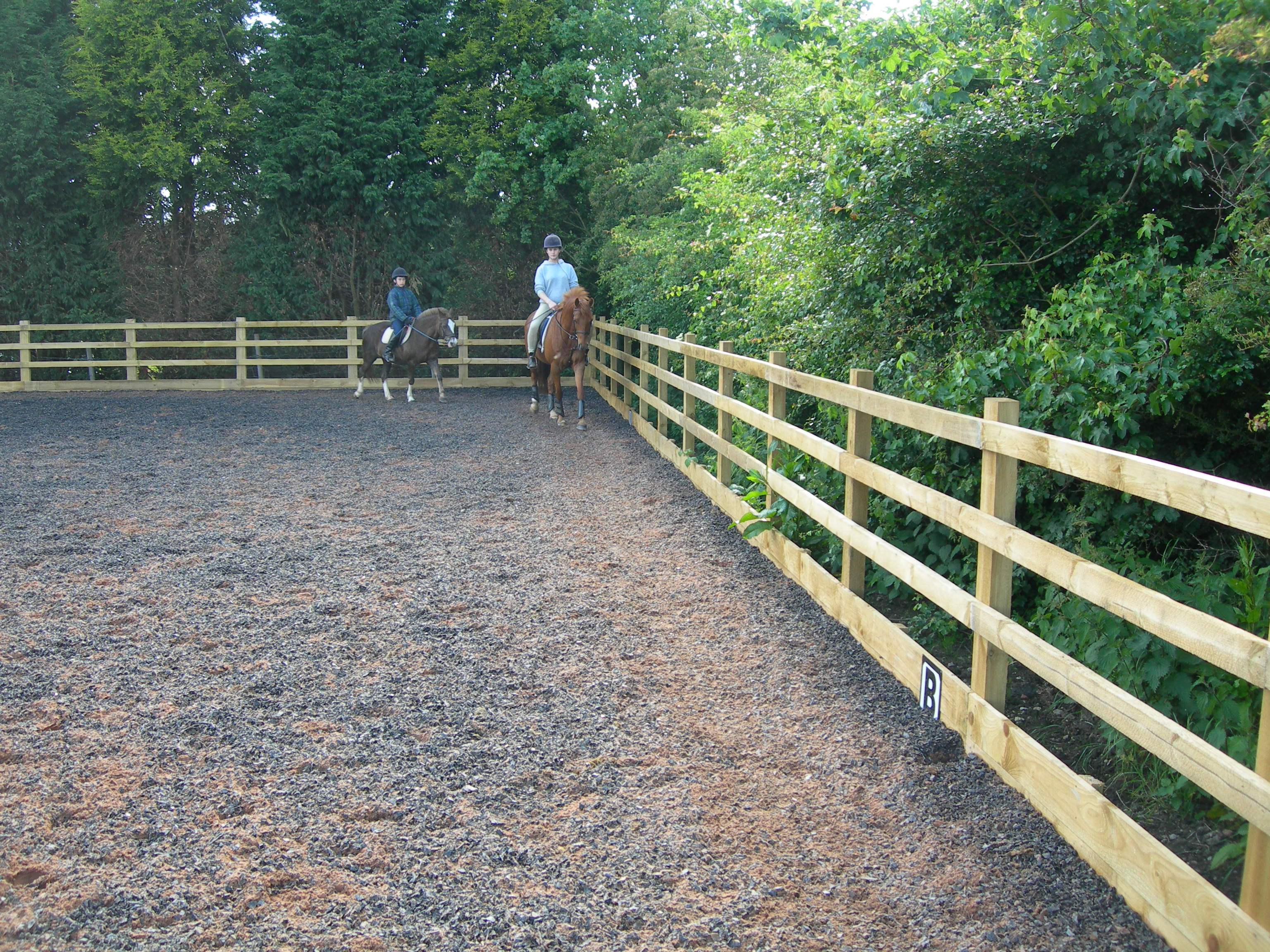 Moulds Fencing Equestrian Fencing